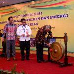 Rapat Koordinasi Bidang Ketenagalistrikan dan Energi Provinsi Riau