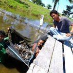 Kelompok Pertanian Terpadu Sakai Duri Berhasil Kembangkan Usaha