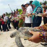 Bangka Cultural Wave, Detak Baru Pariwisata Bangka