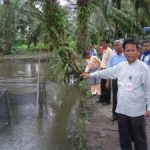 CPI Tingkatkan Pendapatan Masyarakat Sakai Lewat Kolam Ikan