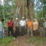 Riaupulp Ajak LKD Olak dan Segati Study Banding Kearifan Lokal