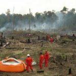 RAPP-BKSDA Riau Padamkan Kebakaran Lahan di Teso Nilo